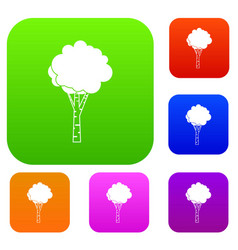 birch set collection vector image