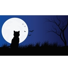 Silhouette of cat with full moon hallowen scenery vector