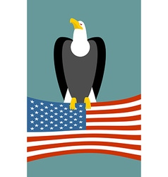 Bald eagle and American flag USA national symbol vector image vector image