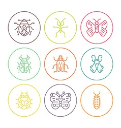 Bugs in circles vector
