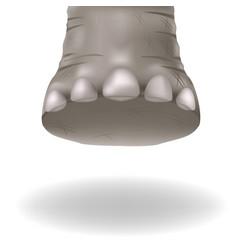 Leg adult elephant vector