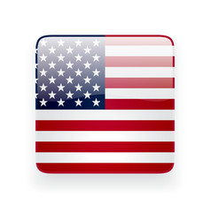 Square icon with flag of the usa vector