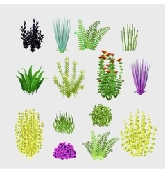 Varieties of plants big set 14 icons vector
