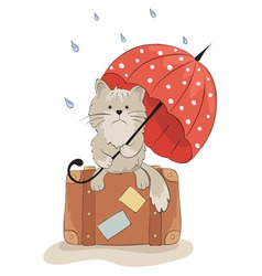 Sad cat with an umbrella vector