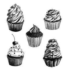 set of hand drawn cupcakes vector image