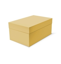 Blank paper or cardboard box template vector image