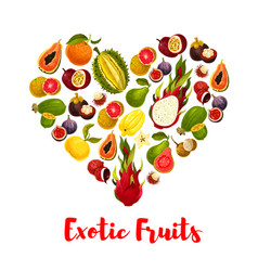 Heart with exotic tropical fruits for food design vector