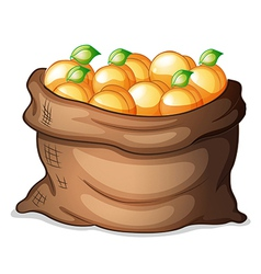 A sack of oranges vector image vector image