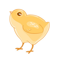 Cute cartoon yellow chicken vector