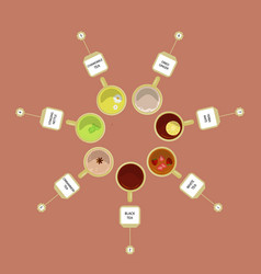 different kinds of tea vector image