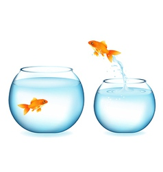 Goldfish jumping to other goldfish vector