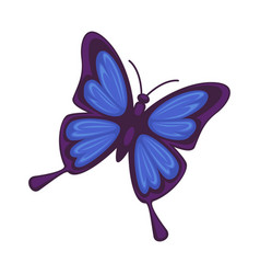 blue butterfly isolated on white background vector image vector image