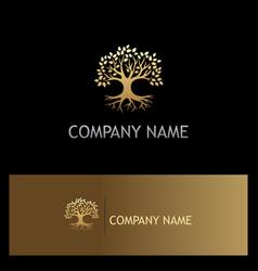 Gold oak tree botany eco logo vector
