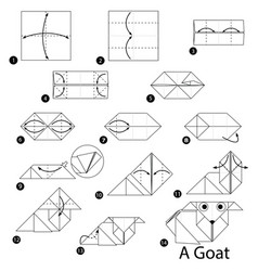 Step instructions how to make origami a goat vector
