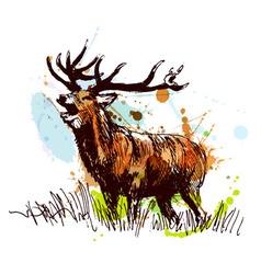 Colored hand sketch deer vector