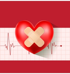 heart with plaster on cardiogram vector image
