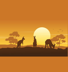 Silhouette kangaroo landscape beauty collection vector