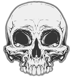Realistic white and grey human skull tattoo vector