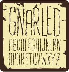 Grunge scratch type font vintage typography vector