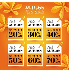 Set with autumn sale label vector