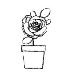 Blurred silhouette flowered rose with leaves and vector