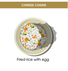 chinese cuisine fried rice eggs traditional dish vector image vector image