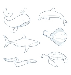 The outlines of sea creatures vector