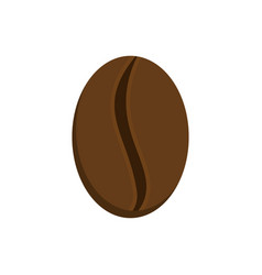 Grain coffee isolated raw grains of coffee tree vector