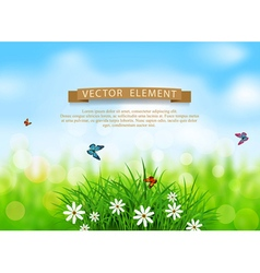 Green grass with white flowers vector image vector image