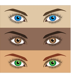Image of three variations of woman eyes vector
