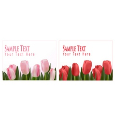 flower design border vector image