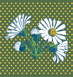 Hand drawn chamomile flower vector