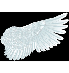 white wing vector image vector image
