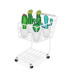 Cactus and cactus flowers in shopping cart vector