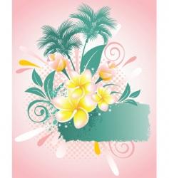 flower Plumeria vector image vector image