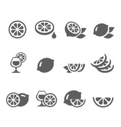 Lemon lime icons set vector image vector image