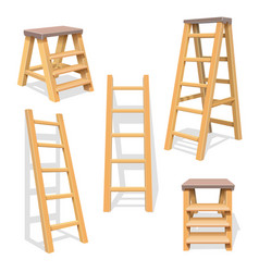Wood household steps isolated wooden ladder vector