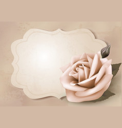 Retro greeting card with pink rose vector