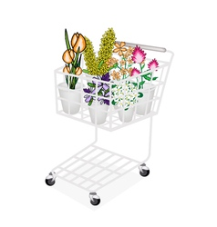 Flower and orchid in a shopping cart vector