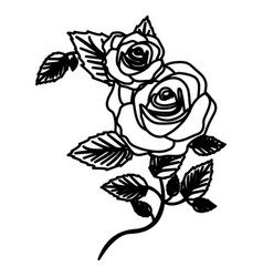 Figure roses with squere petals and leaves icon vector