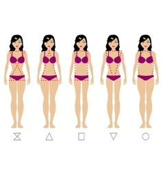 Five types of the female body vector