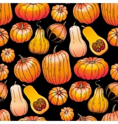 Graphic collection of pumpkins vector