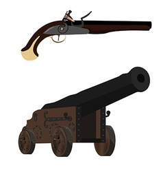 Musket and cannon vector