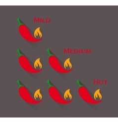 Red chilli peppers scale vector