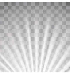 Blurred Sun Rays vector image vector image