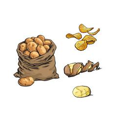 sketch raw potato bag chips peel set vector image