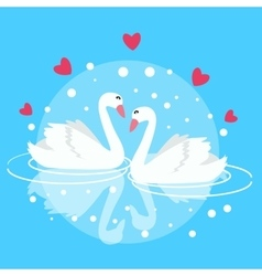 two swan swimming fall in love couple marriage vector image