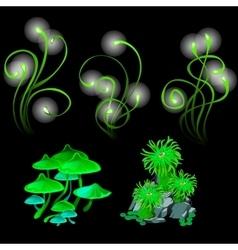 Fantastic glowing mushrooms and polyps vector image