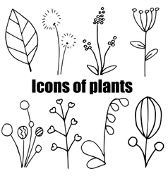 High quality original set of plants icons isolated vector image