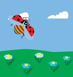 ladybug flying over the meadow vector image vector image